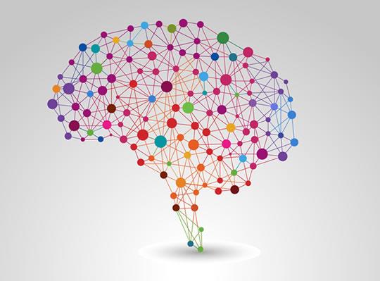 Seis consejos para entender cómo funciona el cerebro